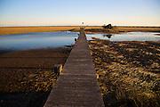 A dock in a saltwater marsh along the coast of South Carolina near Charleston.