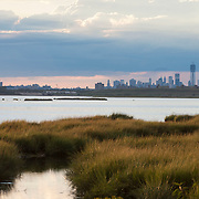 September 9, 2012 - Queens, NY : Stretching across more than 9,000 acres, Jamaica Bay Wildlife Refuge --part of the Gateway National Recreation Area -- contains fresh and salt water habitats teeming with wildlife. The 1.5-mile West Pond Trail provides a good vantage point for bird watching and boasts a picturesque view of the Manhattan skyline. CREDIT: Karsten Moran for The New York Times