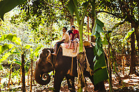 An elephant ride at the Tropical Spice Plantation in Goa, India.