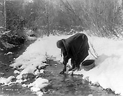 Apsaroke woman standing in snow scooping water from a stream with a can, bucket beside her.