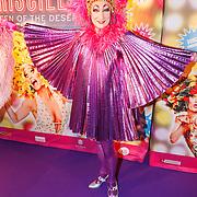 NLD/Amsterdam20151111 - Premiere Priscilla, Queen of the Desert,