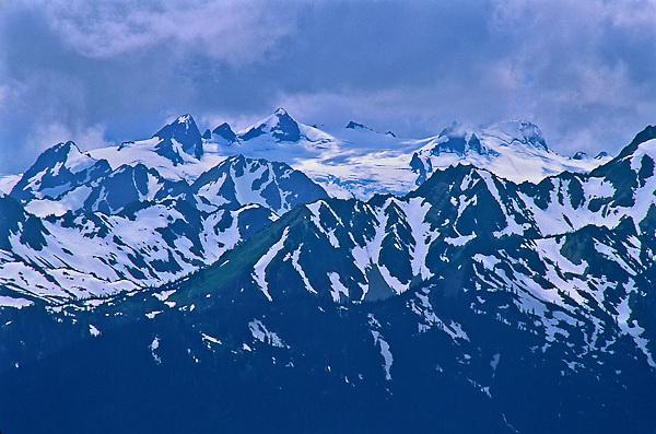 Mount Olympus as viewed from Hurricane Ridge, Olympic National Park, Washington, USA.