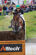 Gabriel Figueiredo Silva Cury, (BRA), Grass Valley - Eventing Cross Country test- Alltech FEI World Equestrian Games™ 2014 - Normandy, France.<br /> © Hippo Foto Team - Leanjo de Koster<br /> 30/08/14