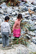 Moroccan children collecting drift wood and reeds in the Ourika Valleyand river  Morocco