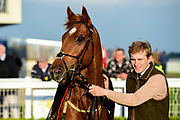 Bayshore Freeway ridden by Franny Norton and trained by Mark Johnston in the Andersons Waste Handicap race.  - Mandatory by-line: Ryan Hiscott/JMP - 01/05/2019 - HORSE RACING - Bath Racecourse - Bath, England - Wednesday 1 May 2019 Race Meeting
