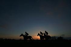 County Raceday - Market Rasen Racecourse