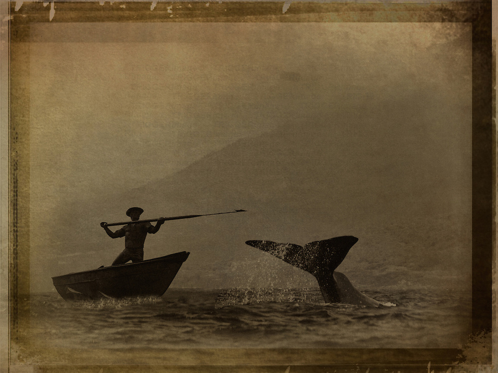 A hunter in a small boat holding spear near whale