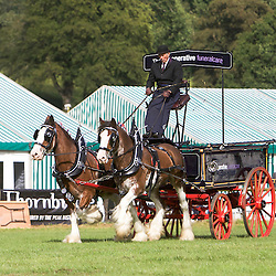 Gawin Holmes driving his own Clydesdales, Sorbie and Jake<br /> 4th  Pairs Turnouts