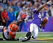 BALTIMORE, MD -- 11/20/11 --  Bengals cornerback Adam Jone (24) tackles Ravens wide receiver Torrey Smith (82) by his hair at the Bengals 41. Smith gained 28 yards on the Joe Flacco pass. Baltimore Ravens beat the Cincinnati Bengals 31-24  at M&T Bank Stadium.
