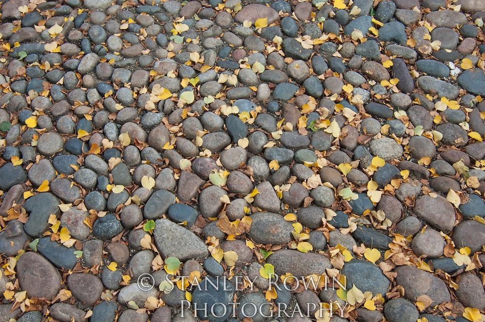 detail: leaves; pattern. patterns; stones; street