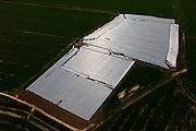 Nederland, Friesland, Gemeente Littenseradeel, 01-05-2013; platteland Friesland:, omgeving Oosterwierum: met folie afgedekte landbouwgrond.<br /> Frisian countryside,  farmland covered w. foil.<br /> luchtfoto (toeslag op standard tarieven)<br /> aerial photo (additional fee required)<br /> copyright foto/photo Siebe Swart