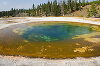 Beauty Pool, Yellowstone National Park