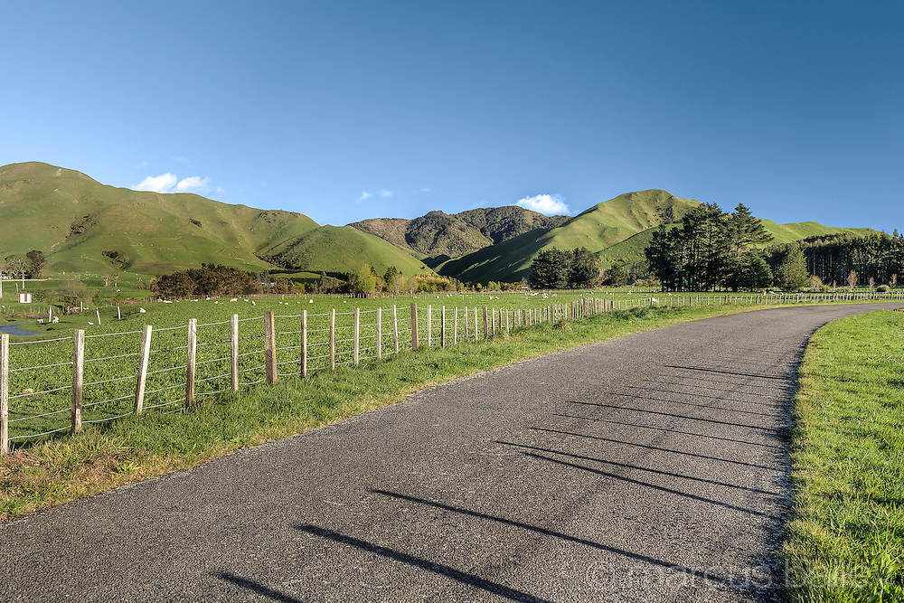 Rural road in the Wairarapa, New Zealand