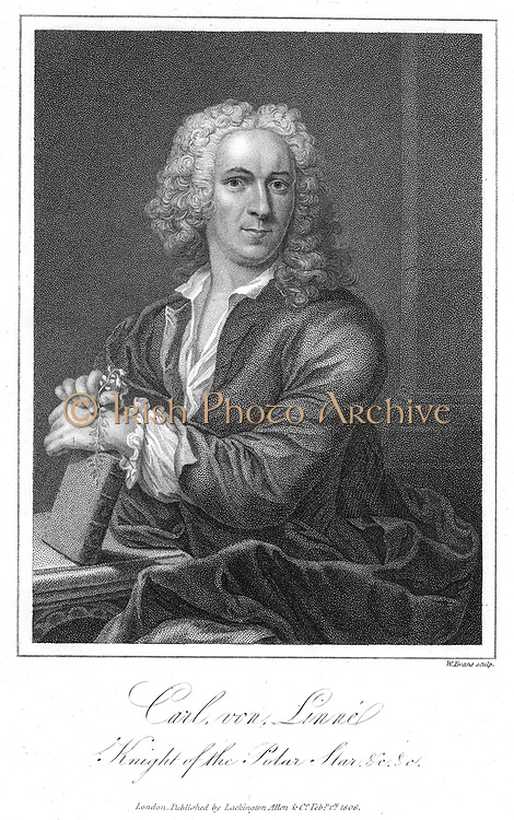 Linnaeus (Carl von Linne - 1707-1778). Swedish naturalist, shown holding a sprig of Linnea borealis. Engraving
