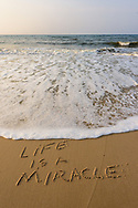 Life Is A Miracle, Beach, Water Mill, NY