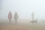 © Licensed to London News Pictures. 13/03/2014. Richmond, UK . People walk their dogs through the park. Deer graze and feed in the heavy fog at Richmond Park, Surrey, today 13th March 2014. Photo credit : Stephen Simpson/LNP