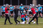 Carolina Panthers quarterbacks Cam Newton(1) Will Grier(3) and Michael Palardy(6) during minicamp at Bank of America Stadium, Thursday, June 13, 2019, in Charlotte, NC. (Brian Villanueva/Image of Sport)