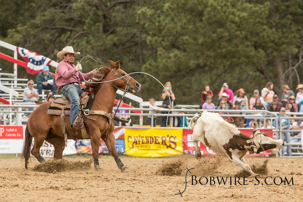 Heeler Trevor Schnaufer makes his team roping run during the third performance of the Elizabeth Stampede on Sunday, June 3, 2018.