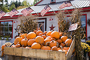 Display of pumpkins in front of store.