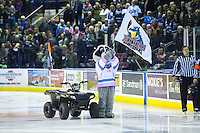 KELOWNA, CANADA - JANUARY 19: Rocky Racoon, the mascot of the Kelowna Rockets stands on the ice against the Prince George Cougars on January 19, 2016 at Prospera Place in Kelowna, British Columbia, Canada.  (Photo by Marissa Baecker/Shoot the Breeze)  *** Local Caption *** Rocky Racoon; Mascot;