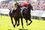 CLAN ROYALE (3) ridden by Andrea Atzeni and trained by Roger Varian winning The Judith Marshall Memorial British EBF Novice Stakes over 5f (£15,000)  during the Family Race Day held at York Racecourse, York, United Kingdom on 8 September 2019.