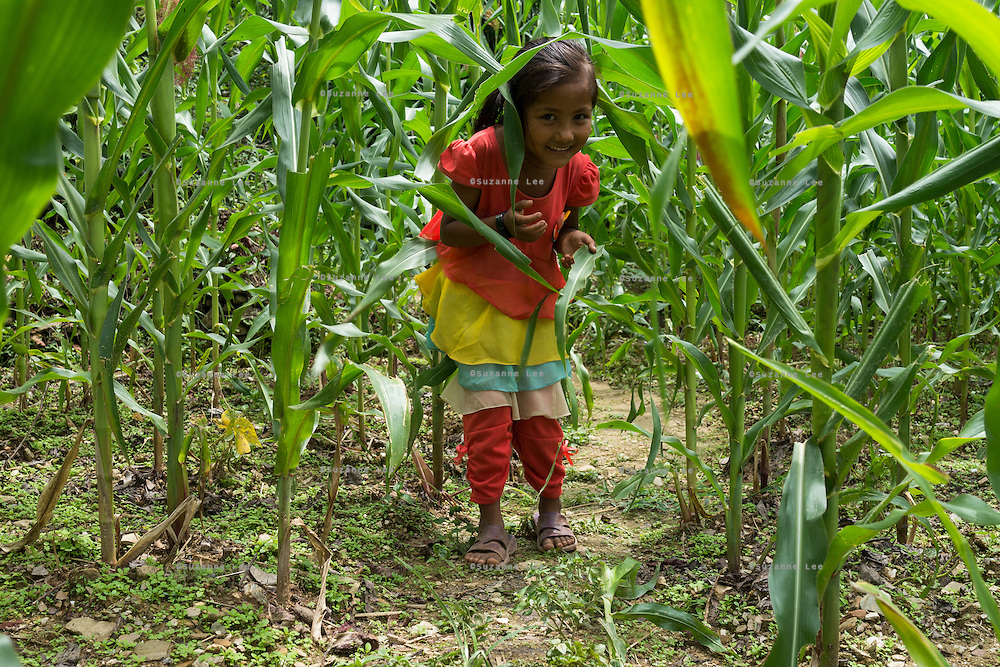 Monika (7) plays in the corn fields near her temporary home in Chautara, Sindhupalchowk, Nepal on 29 June 2015. The three girls lost their mother during the April 25th earthquake that completely levelled their house. Aastha was buried under the rubble together with her mother but Aastha survived. As their father Ratna Baniya (28) cannot care for the children on his own, SOS Childrens Villages has since been supporting the grandmother with financial and social support so that she can manage to raise the children comfortably and ensure that they will all be schooled. Photo by Suzanne Lee for SOS Children's Villages