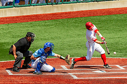 NORMAL, IL - May 01: Joe Butler bats, Max Wright catches, J Mark Huesman umps during a college baseball game between the ISU Redbirds and the Indiana State Sycamores on May 01 2019 at Duffy Bass Field in Normal, IL. (Photo by Alan Look)