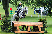 Skies The Limit III ridden by Jodie Seddon in the Equi-Trek CCI-L4* Cross Country during the Bramham International Horse Trials 2019 at Bramham Park, Bramham, United Kingdom on 8 June 2019.