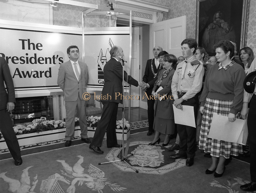28/10/1985<br /> 10/28/1985<br /> 28 October 1985<br /> Launch of Gaisce The Presidents Award at Aras an Uachtarain. President Dr. Patrick Hillery launched the new national youth award scheme to be the nations highest award to Irish young people aged 15-25. Picture shows President Hillery greeting Mr. George Birmingham, T.D., Minister of State at the Department of Labour.