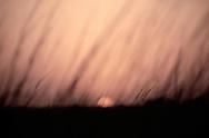 Sunset, Padre Island National Seashore, Texas