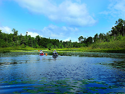 Kayaking on the Brunsweiler River in the chequamegon National Forest.