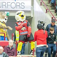 2019-09-28 | Malmö, Sweden: Malmö Redhawks mascot Hawkan during the game between Malmö Redhawks and Örebro HK at Swedbank Arena ( Photo by: Roger Linde | Swe Press Photo )<br /> <br /> Keywords: Swedbank Arena, Malmö, Icehockey, SHL, Malmö Redhawks, Örebro HK, mo190928