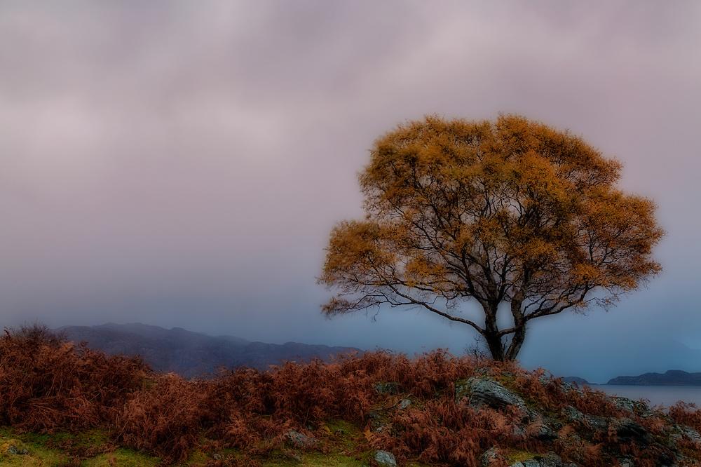 Loch Torridon, Wester Ross, Scotland