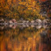 Fall aspen color on North Lake near Bishop, California.