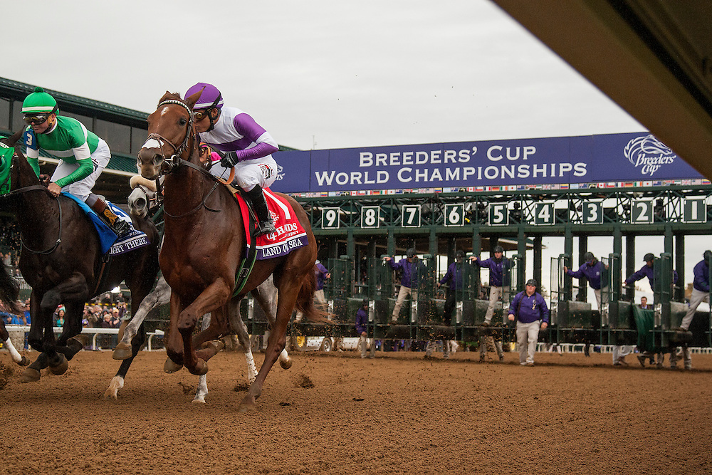 October 31, 2015:  The Start of The Breeders' Cup Juvenile Filles at Keeneland Race Track in Lexington, Kentucky. Evers/ESW/CSM