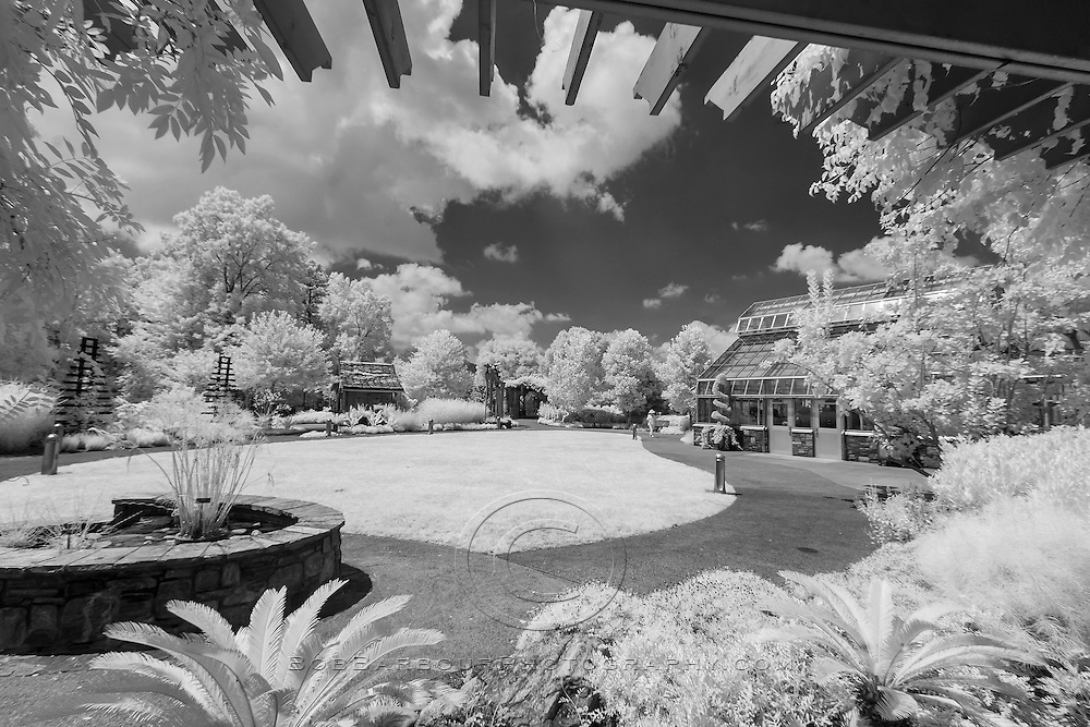 Infrared photo of Asheville Arboretum, North Carolina