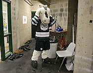 Roughriders mascot Ricochet gets ready to take the ice before the start of the game at the Cedar Rapids Ice Arena in Cedar Rapids on Saturday, September 28, 2013.
