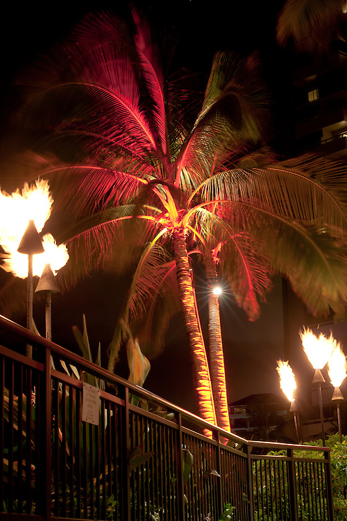 Palms and tiki torches at Sheraton Resort on Waikiki Beach, Hawaii