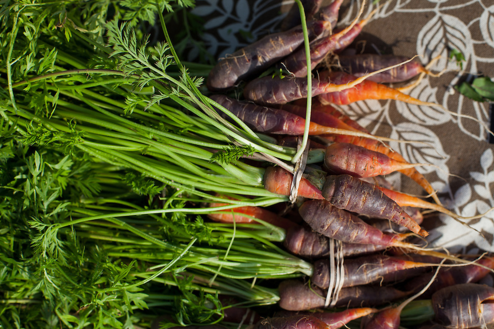 Carrots for sale at the Mount Pleasant Farmers' Market. The Mount Pleasant Farmers' Market is producer-only, meaning two things. First, everything offered was raised, grown, produced, made, or baked by the person selling it. Second, the food is local and regional. Its region includes the five states whose farmland and waterways serve the Washington, DC metro region.