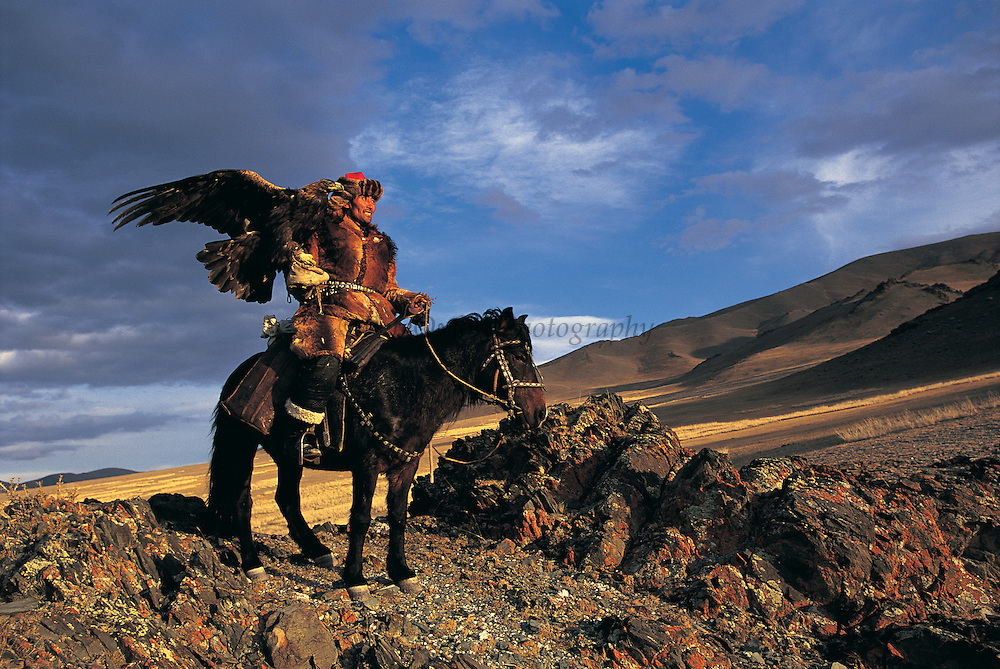 Kazakh &amp; Golden eagle<br /> (Aquila chrysaetos)<br /> eagles used for hunting<br /> Western Mongolia