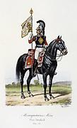 Standard Bearer of the Grey Musketeers, 1814-1815.   From 'Histoire de la maison militaire du Roi de 1814 a 1830' by Eugene Titeux, Paris, 1890.