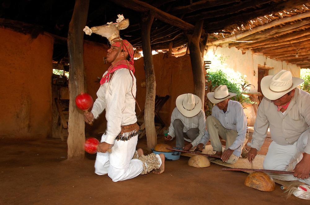Deer Dance, Mayo Indian Home, Los Capomos, near El Fuerte, Sinaloa, Mexico
