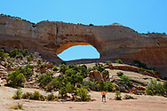 Wilson Arch, Arches National Park, Utah, USA.