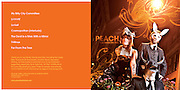 Peach CD Cover - Design by Jason Potter