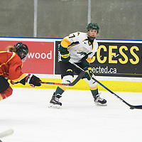 2nd year forward Lilla Carpenter-Boesch (17) of the Regina Cougars in action during the Women's Hockey home game on November 18 at Co-operators arena. Credit: Arthur Ward/Arthur Images