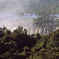 South America, Argentina, Iguacu Falls. Mist rises amongst the trees at Iguacu Falls.