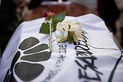 Santiago Mazzarovich/ URUGUAY/ MONTEVIDEO/ El 21 de noviembre falleci&oacute; Luisa Cuesta a sus 98 a&ntilde;os. Cuesta fue una referente en la lucha por verdad y justicia y contra la impunidad. Integr&oacute; Madres y Familiares de Detenidos Desaparecidos, y busc&oacute; a su hijo Nebio durante 42 a&ntilde;os. Madres y Familiares de Detenidos Desaparecidos convoc&oacute; a concentrar en la Plaza Primero de Mayo para rendir homenaje a Luisa Cuesta, y luego se enterraron sus restos en el Cementerio del Norte.<br /> <br /> En la foto: Entierro de Luisa Cuesta. Foto: Santiago Mazzarovich / adhocFOTOS.