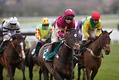 Festival Trials Day - Cheltenham Racecourse - 27 January 2018