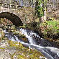 A river cascades through the woods in the mountains of County Wicklow, Ireland