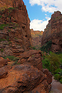 A view from the valley floor, along the Apache Trail